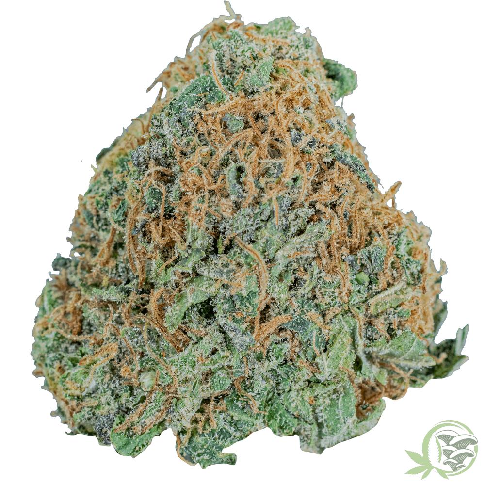 Blueberry Kush Weed Strain at SacredMeds