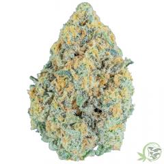 Tang Breath Weed Strain at SacredMeds