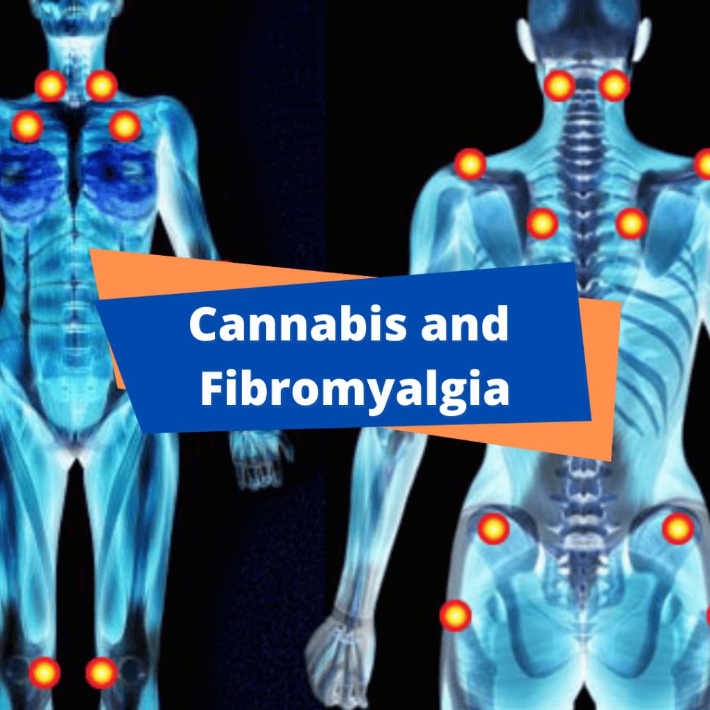 Fibromyalgia and cannabis