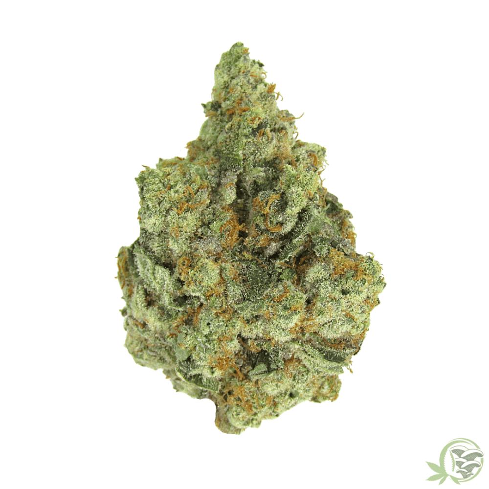 Frost Watermelon Cannabis