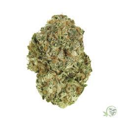 Chemdog Chemdawg Cannabis Marijuana Indica