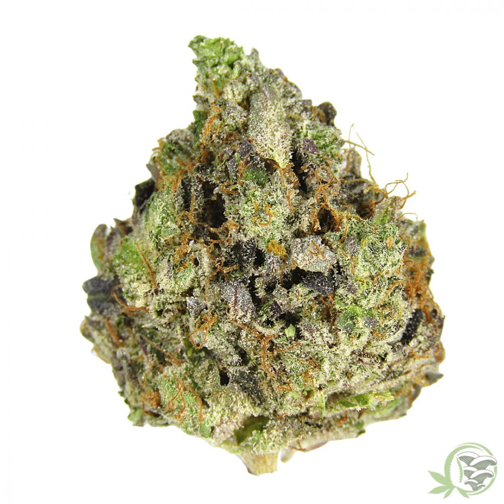 Kush Lindsay OG Indica Hybrid Cannabis