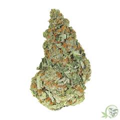Butter Breath Peanut Cannabis Hybrid Strain