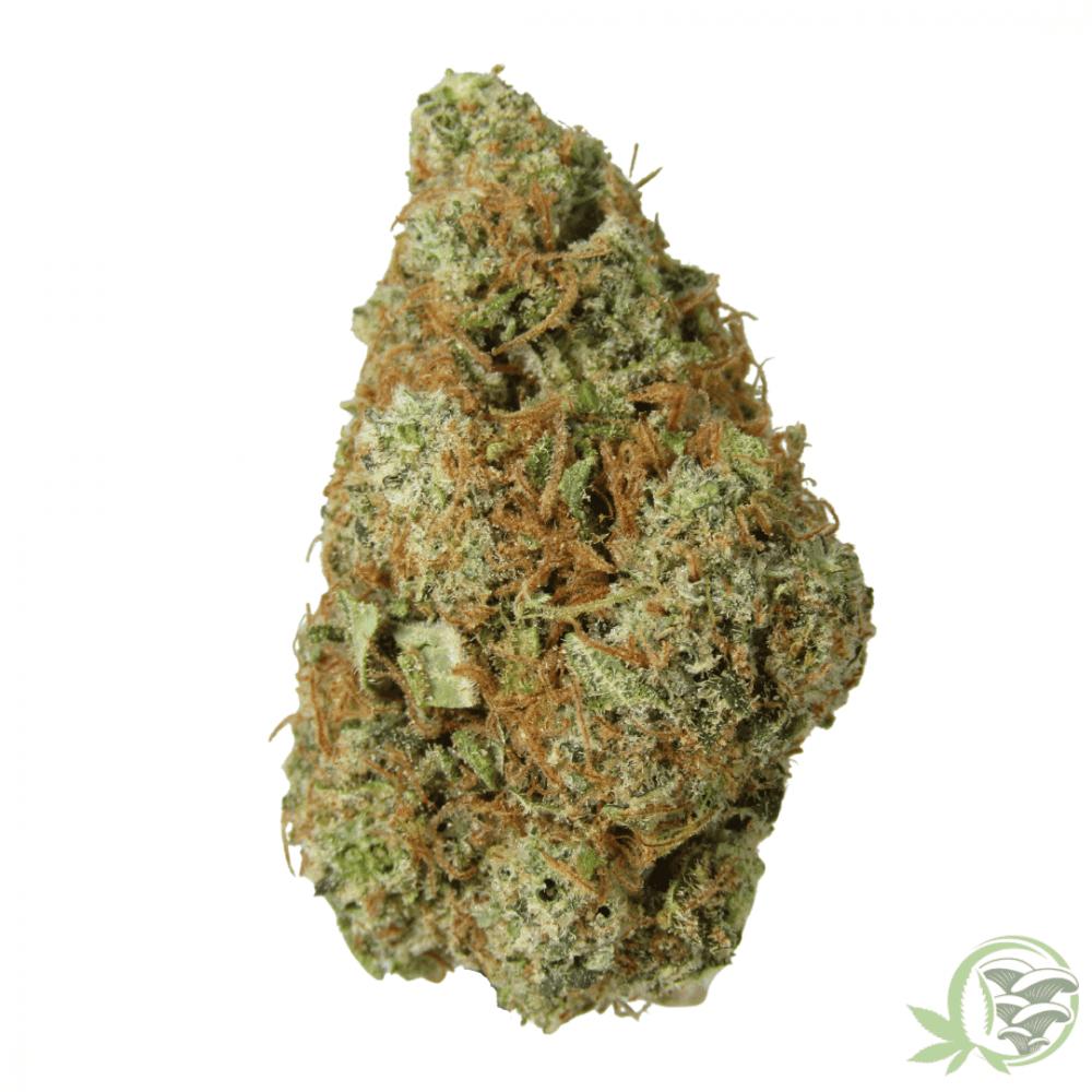 NYC diesel hybrid cannabis