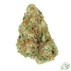 nebula hybrid balanced cannabis indica sativa