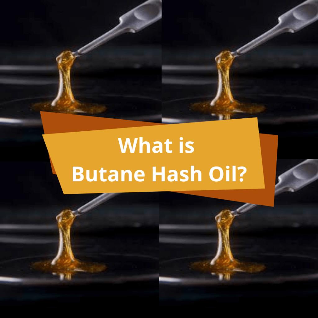 What is butane hash oil?