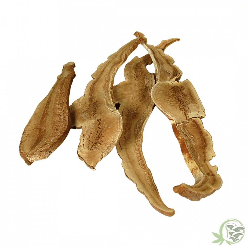 Reishi Mushrooms organic whole sliced dried