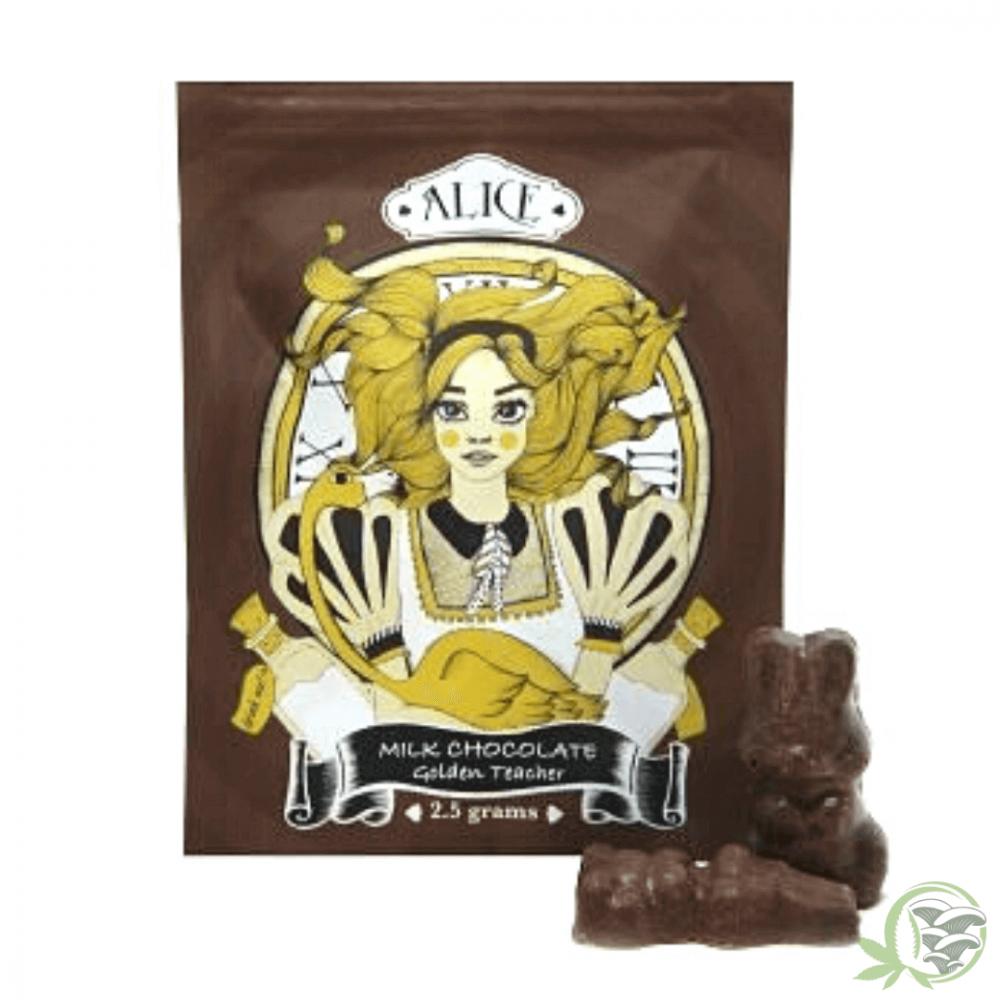 Milk Chocolate Mushrooms Golden Teachers Psilocybin