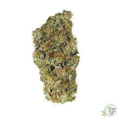 El Jefe Indica Dominant Cannabis Hybrid