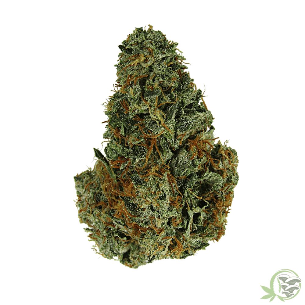 Gassy Pink indica dominant cannabis