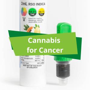 Cannabis for cancer rick simpson oil rso