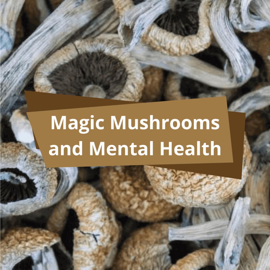 Magic Mushroom as a treatment option for PTSD