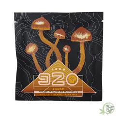 Mushroom Hot Chocolate by Room 920
