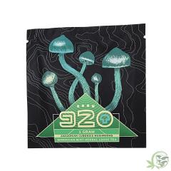 Room 920 Moroccan Mint mushroom Tea